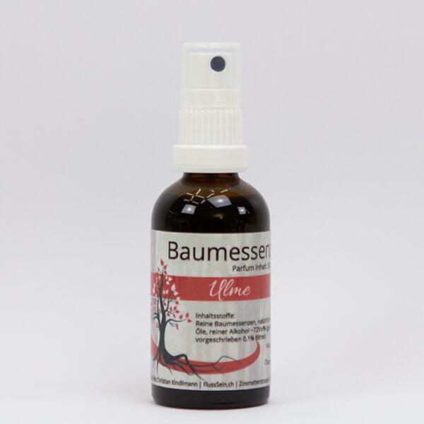 Baumessenz Ulme